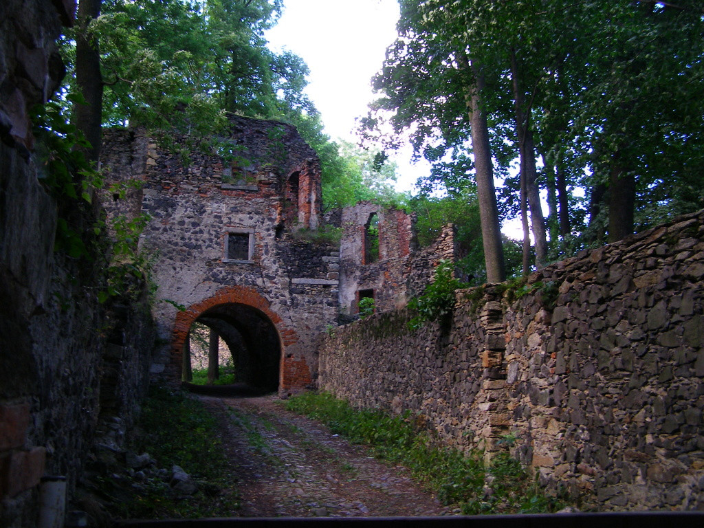 Remnants of castle Gryf