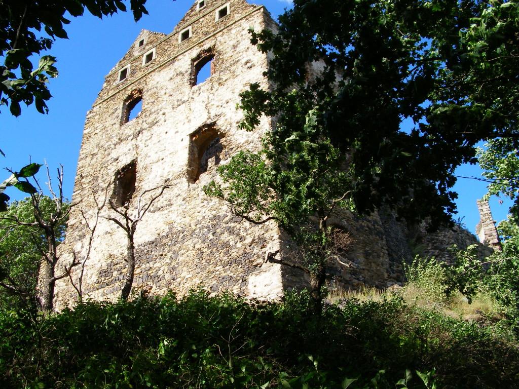 Ruins in Proszowka