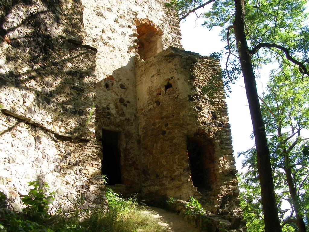 Medium castle in Proszowka