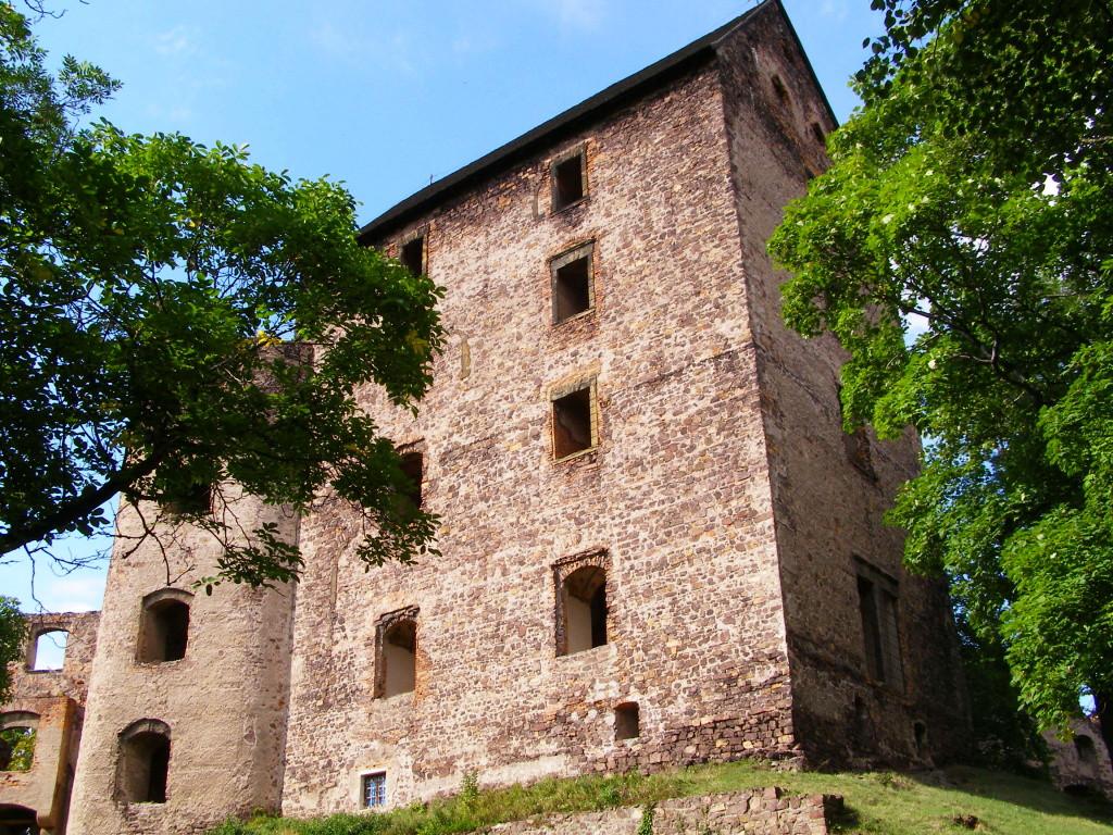 Remnants of castle Swiny