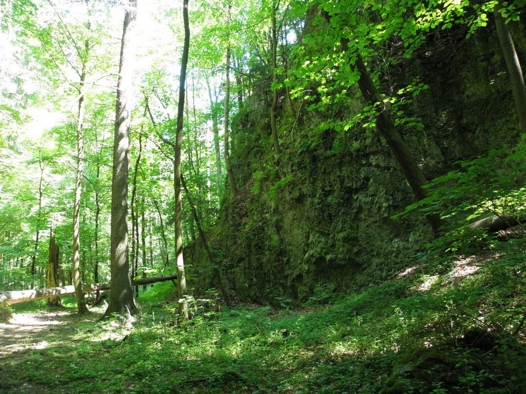 Rezerwat Wąwóz Myśliborski