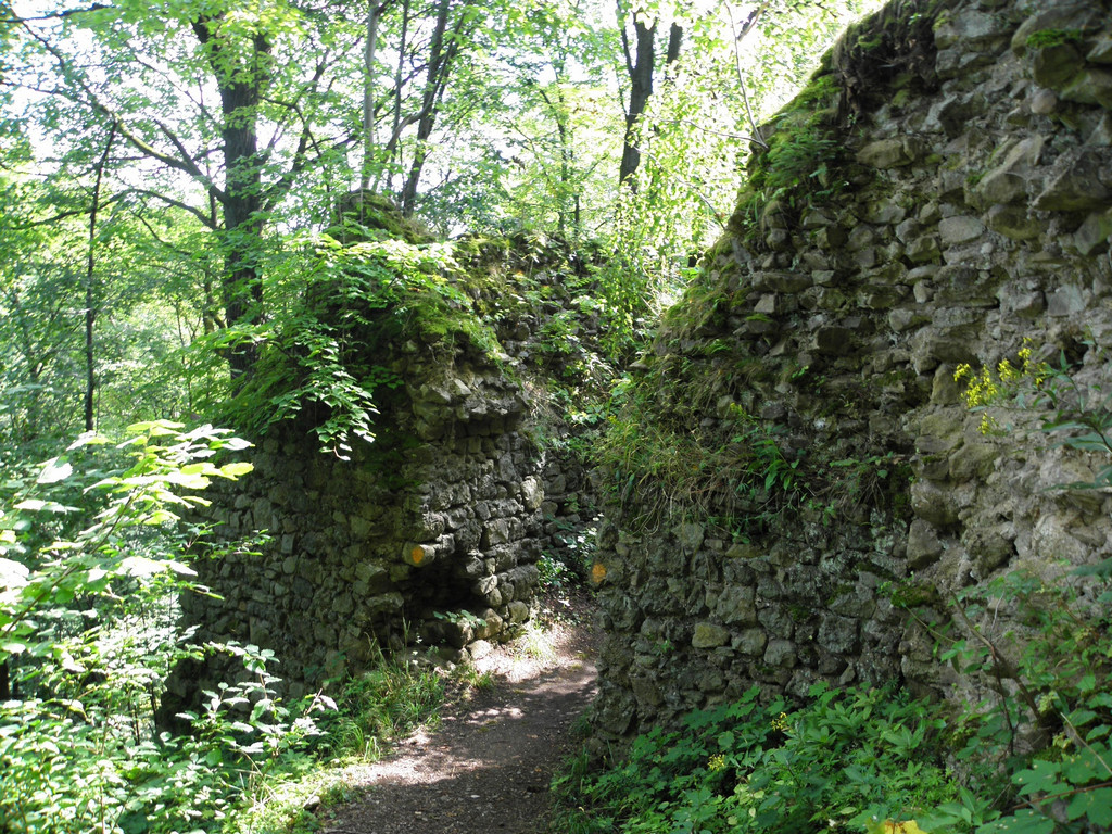 Green trail through ruins of Cisy