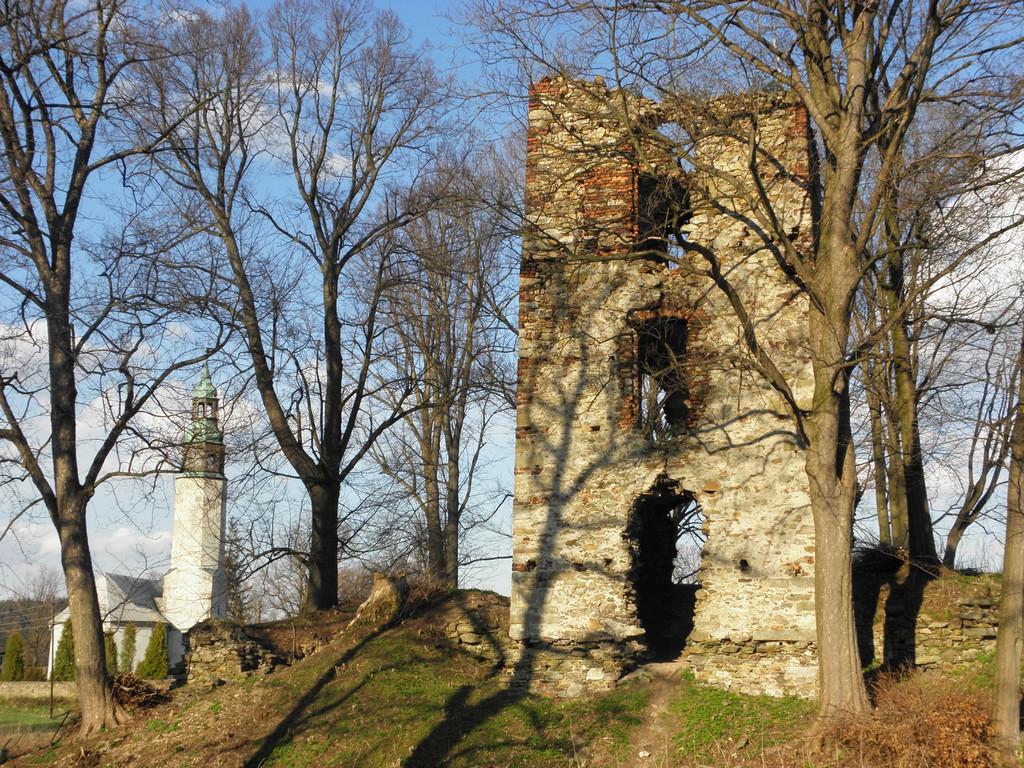 Resztki zamku w Starej Kamienicy
