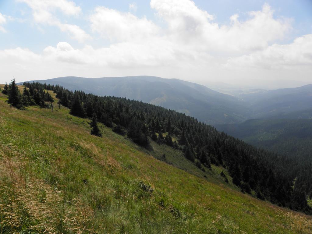 Rejon źródeł Morawy