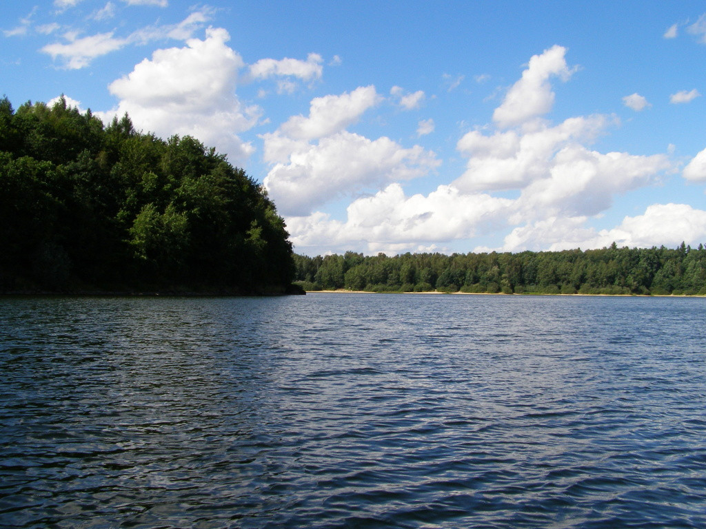 Western parts of the Lesnianskie lake