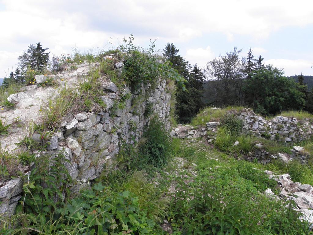 Ruins of Karpień