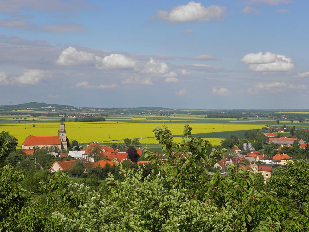 Wzgórza Strzegomskie znad Dobromierza